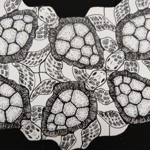Colleen Biden's Escher-esque Turtles