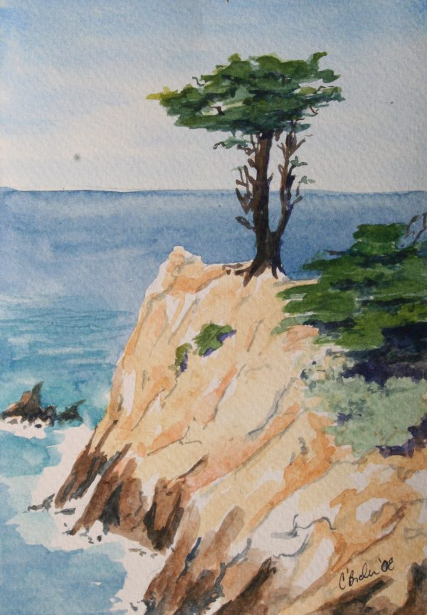 Watercolor painting of a lonely pine tree at Point Lobos State Natural Reserve