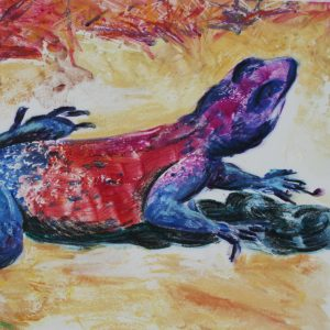 Detail view of red and blue lizard on tan background
